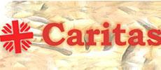 Caritas dioces. di Monreale